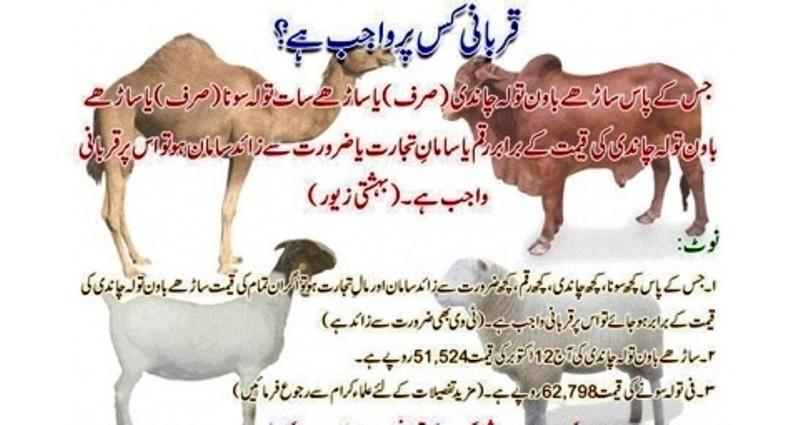 Name:  Qurbani Wajib.jpg Views: 263 Size:  110.6 KB