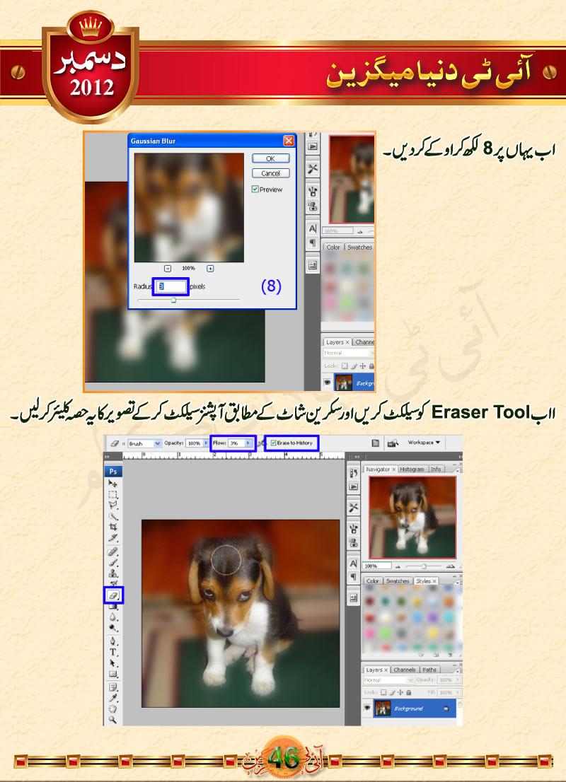 Name:  P46-ITDmagDec2012.jpg Views: 3471 Size:  162.3 KB