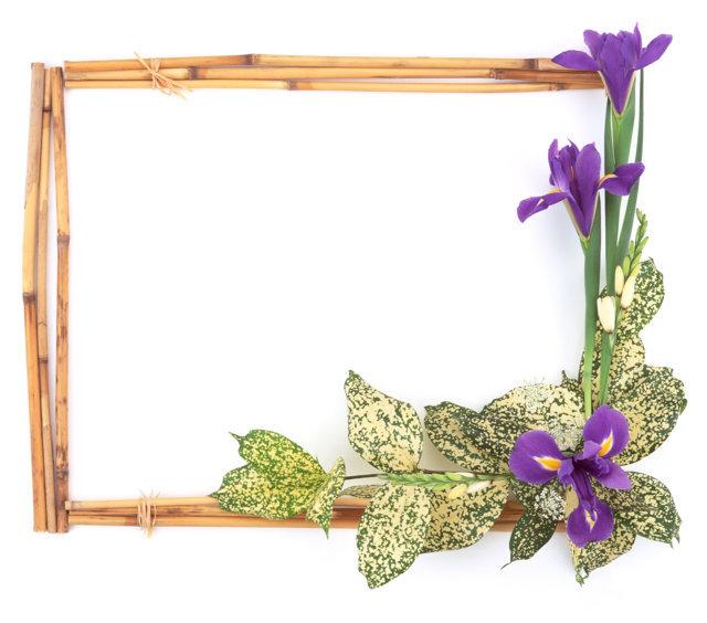 Name:  frame by vakas (49) vkas.JPG Views: 14150 Size:  65.2 KB